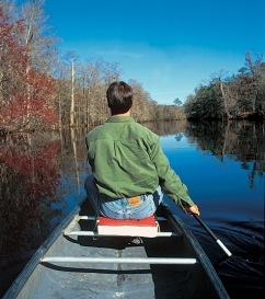 Best places to retire - Gainesville FL