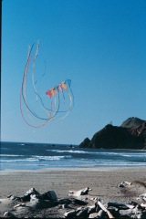 Kite flying in retirement community of Lincoln City