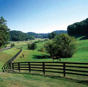 Rolling hills of Middle Tennessee are desirable place to retire for active adults